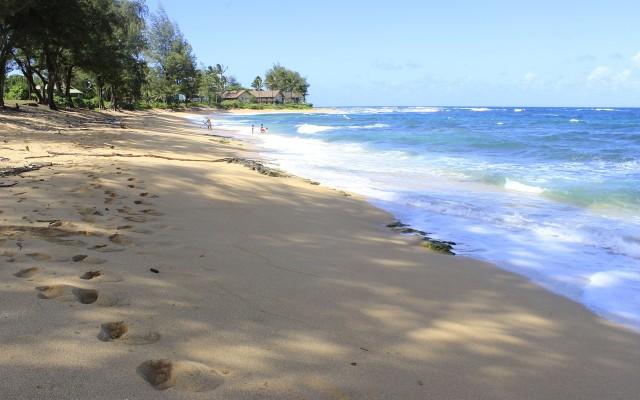 beach-276417_1280
