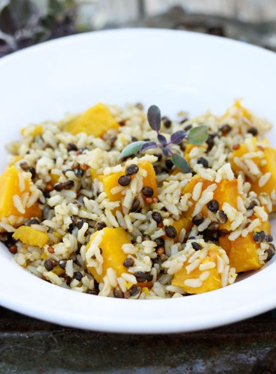 wild rice and squash BB