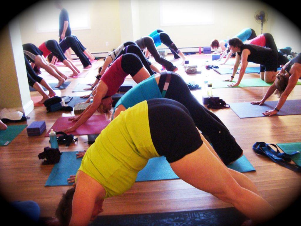 yogaforrunners TEMP