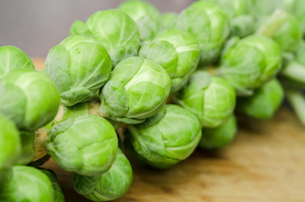 sprouts-1091633_1280