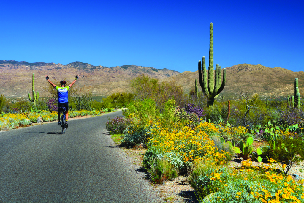 Photo courtesy of Sojourn Bicycling & Active Vacations