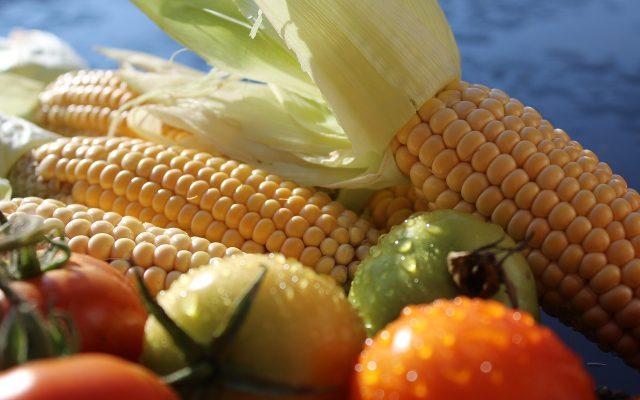 corn-1712731_1280