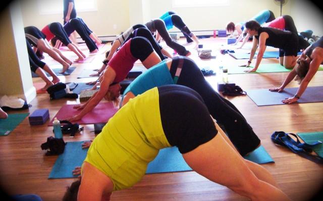 Halifax Yoga - OptiMYz article